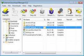 Internet Download Manager IDM 6
